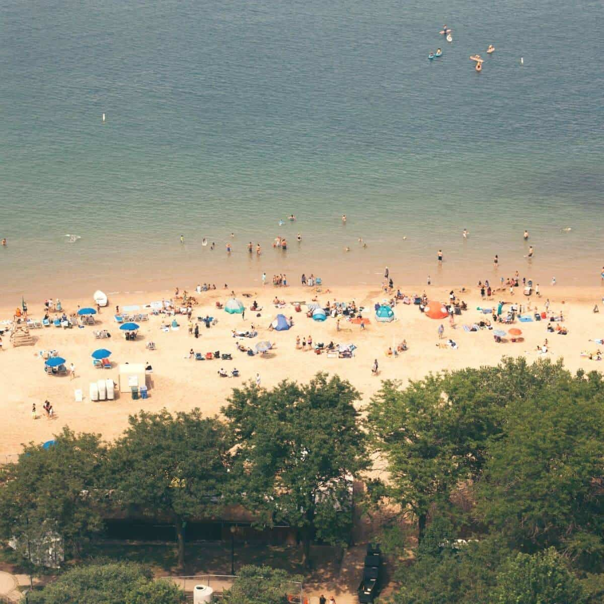 Aerial view of trees and people at Oak Street Beach.