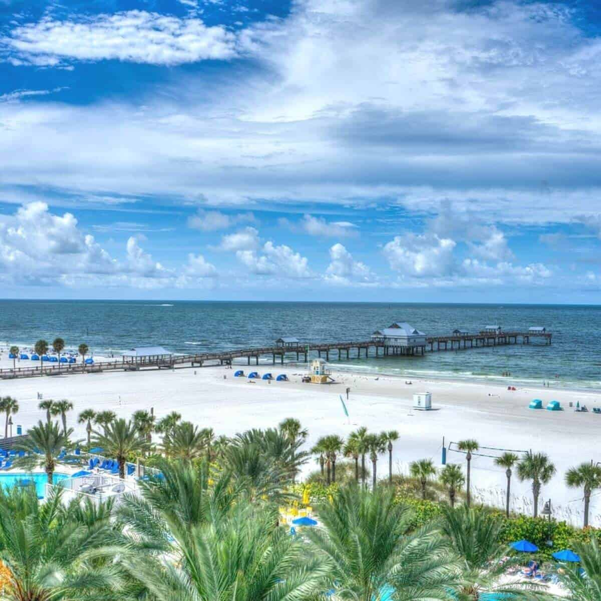 Palm trees and white sand at Clearwater Beach.