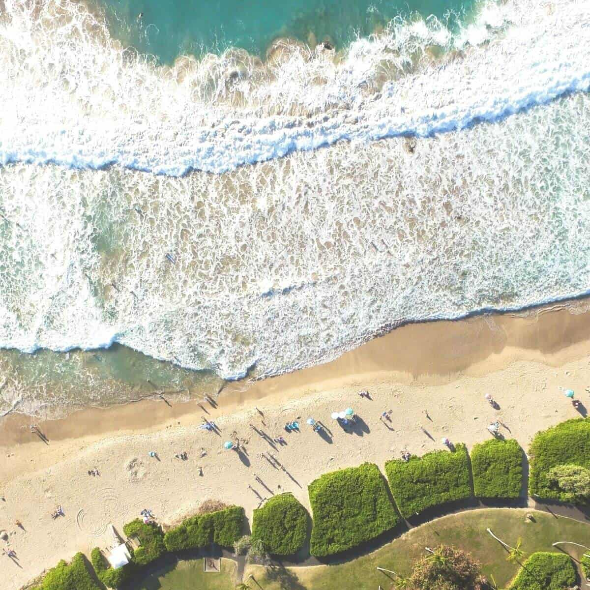 Aerial view of the water, white sand, and greenery at Hapuna Beach.