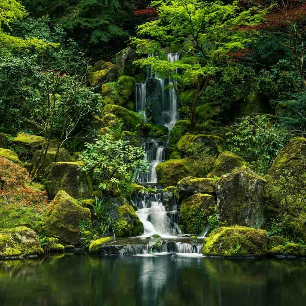Waterfall and pond at Portland Japanese Garden.