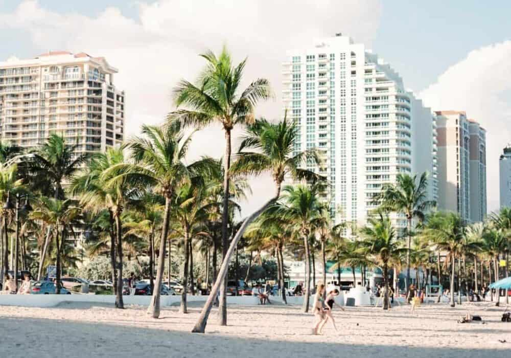 Beach, palm trees, and buildings in Miami.