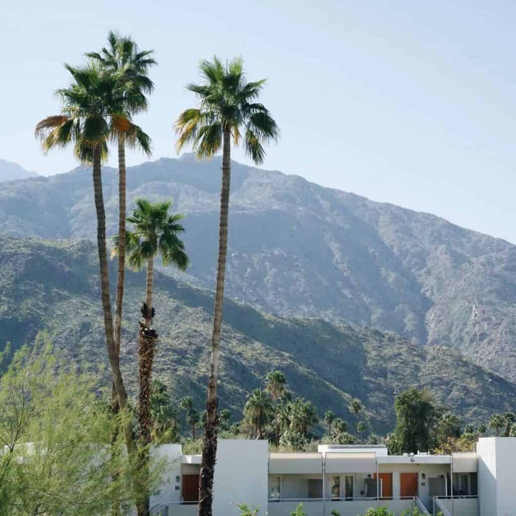 Mountains, palm trees, and a hotel in Palm Springs.